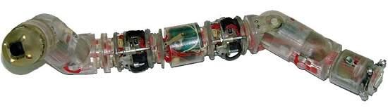 010180130529-micro-robo-biomimetico